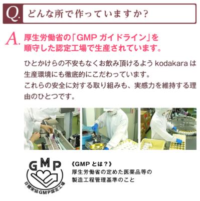 GMPガイドライン